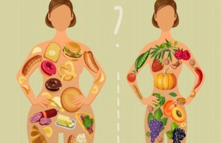Η Πρωτεϊνική Δίαιτα στις πιο Διάσημες Παραλλαγές της.